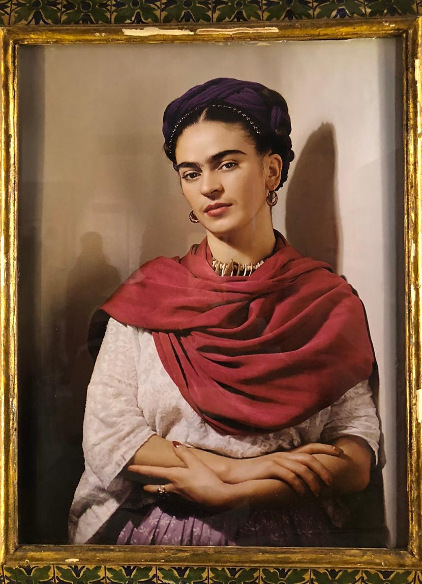 Meksika-3*Coyoacan*Frida Kahlo*